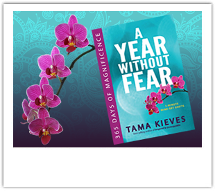 A Year Without Fear